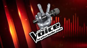 The Voice : la voix avant la star